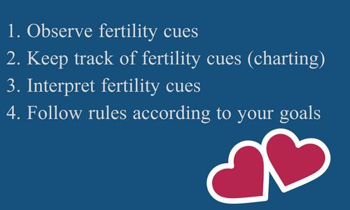 1. Observe fertility cues2. Keep track of fertility cues (charting)3. Interpret fertility cues.png
